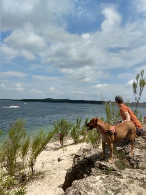 Dog Friendly Things To Do At Scenic Overlook Park, Canyon Lake