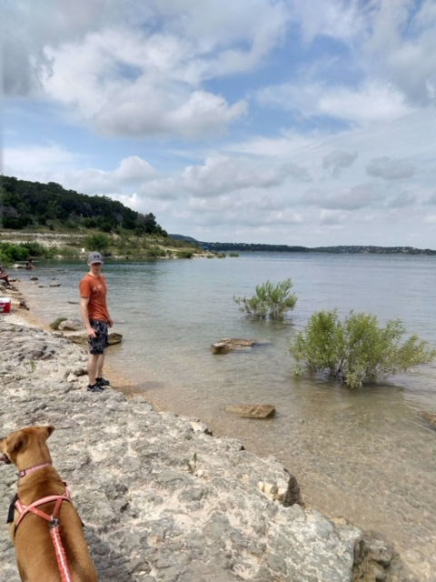 Walking along the beach is one of the things to do at Canyon Lake.