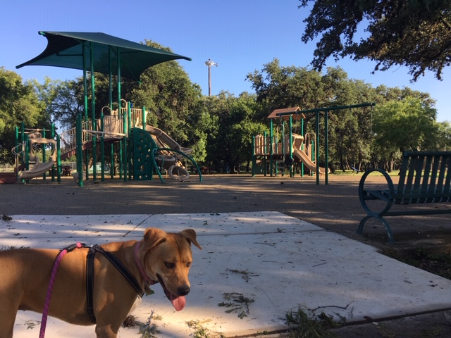 The playground at Blossom Park near Brook Hollow in San Antonio.