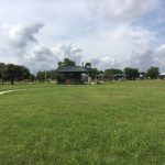 Bulverde Park and Dog Friendly Things to Do