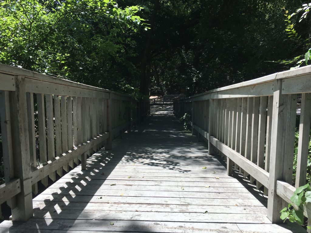 Creepy bridge at Headwaters Sanctuary in San Antonio.