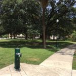 Madison Square Dog Park, Downtown San Antonio