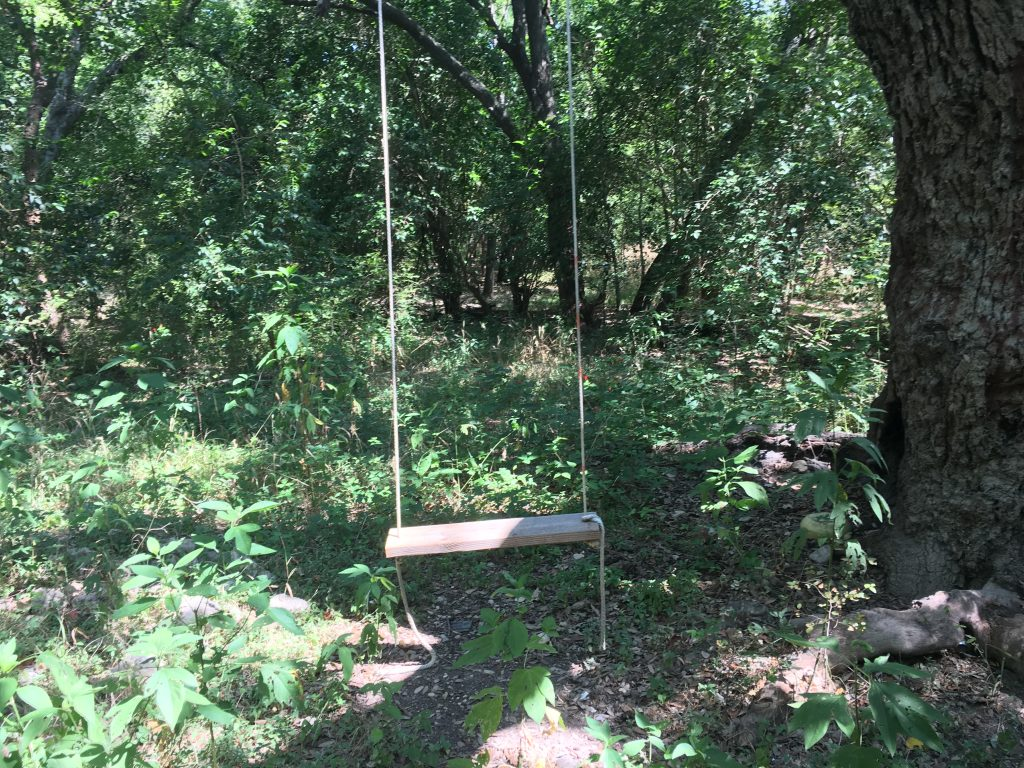 A tree swing in the woods at John James Park in San Antonio.