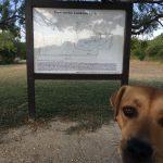 Comanche Lookout Park & the Best Views in San Antonio
