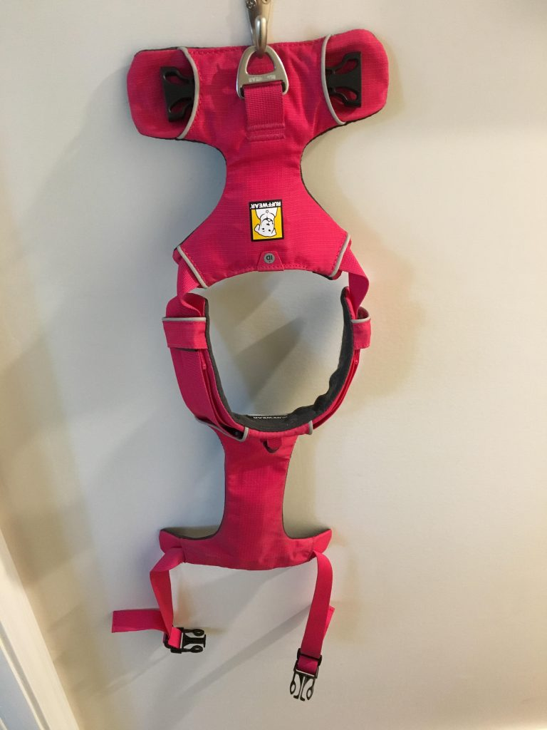 A view of the best dog harness hanging on the wall from the back loop.