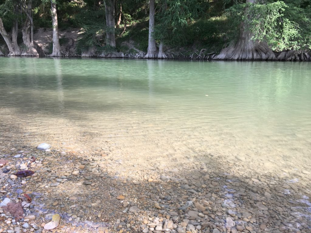 The shallow water is clear at Guadalupe River State Park.