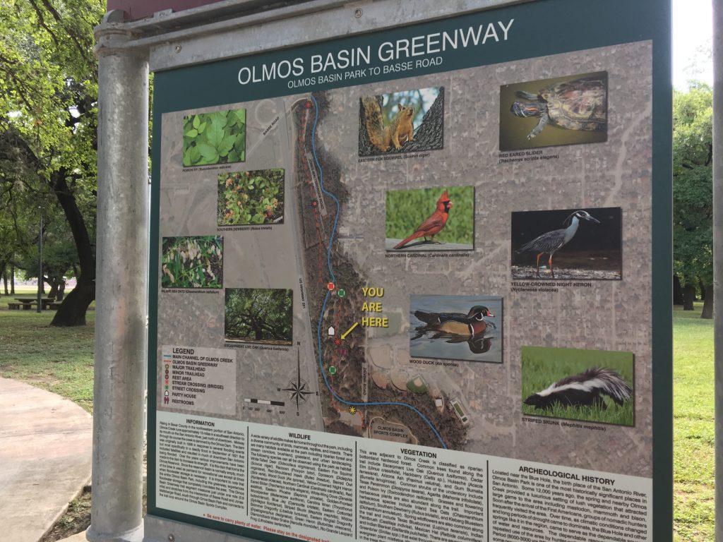 Olmos Basin Park map and wildlife descriptions.