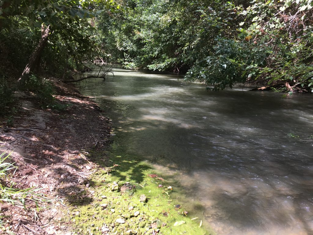 The Medina River in south San Antonio.