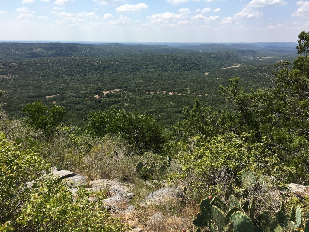Scenic view from the south side of the overlook in the Hill Country.
