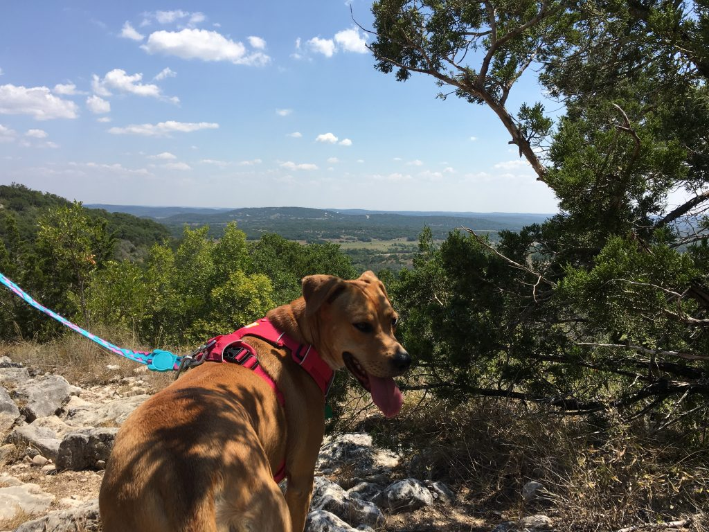 Hiking out in the Hill Country provides good exercise.