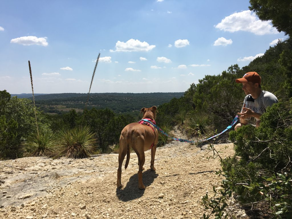Climbing West Peak Overlook Trail at Hill Country State Park.