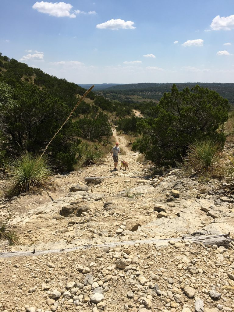 The challenging incline of the Scenic Overlook Trail at Hill Country State Park.