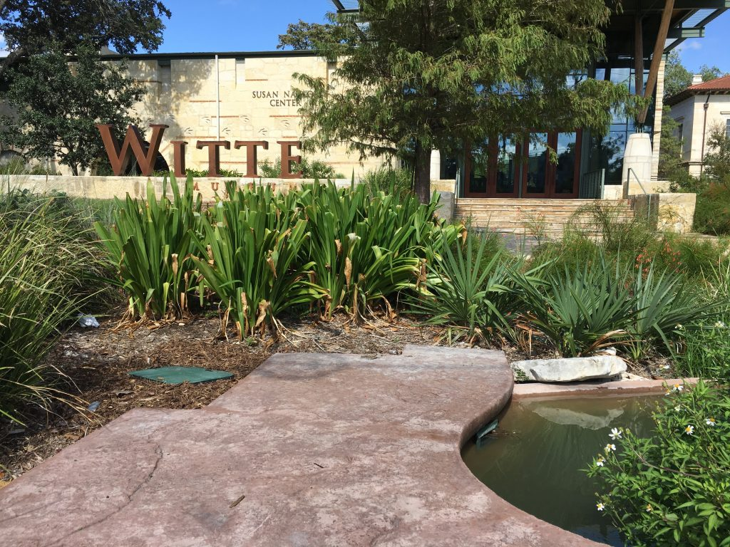 The Witte Museum on the northeast side of Brackenridge Park.