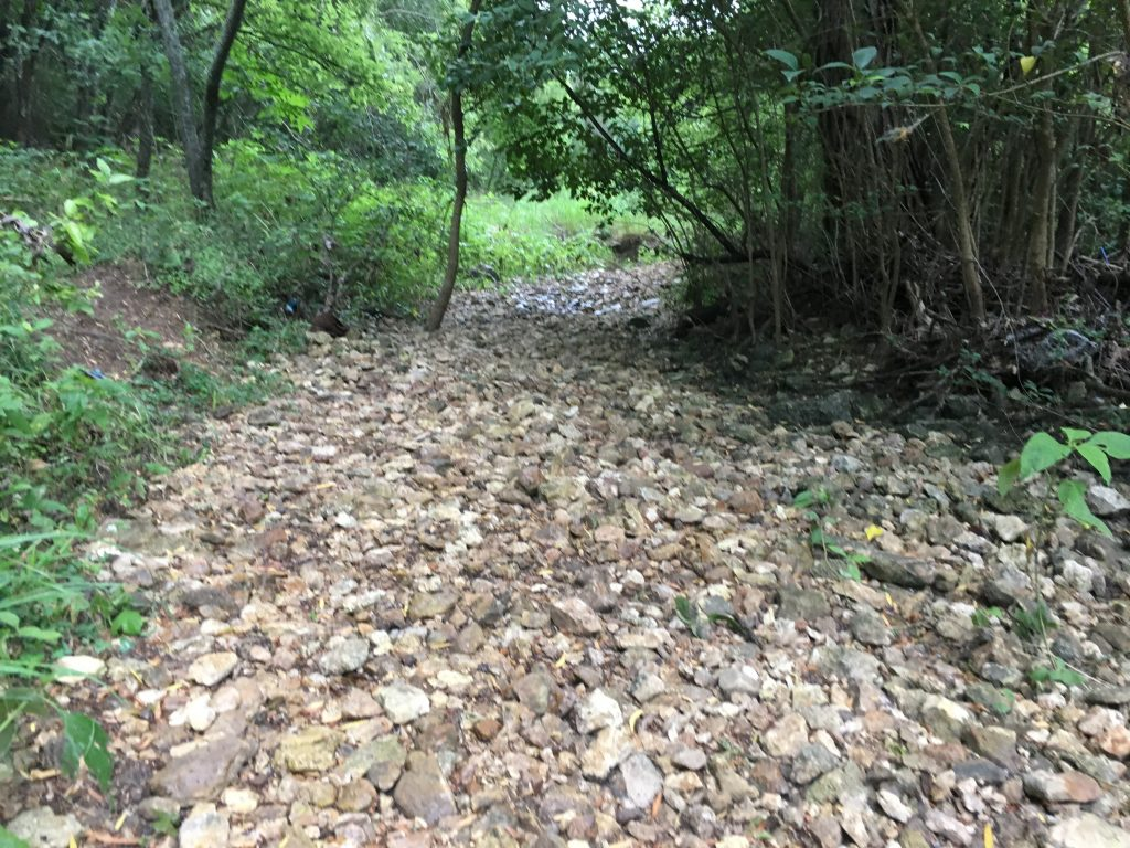 Rocky and dry creek beds are easy to find at Friesenhahn Park.