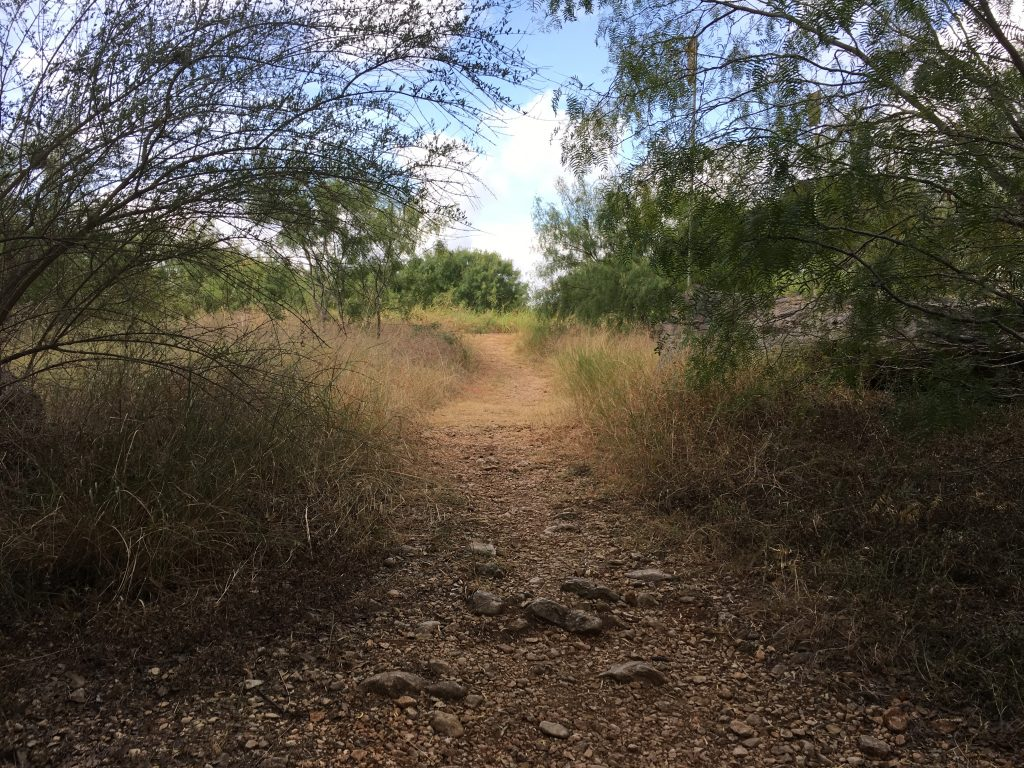 One of the short nature trails at Walker Ranch Park.