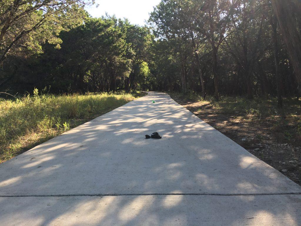 Bags of dog poop line the concrete pathway at OP Schnabel Park in San Antonio.