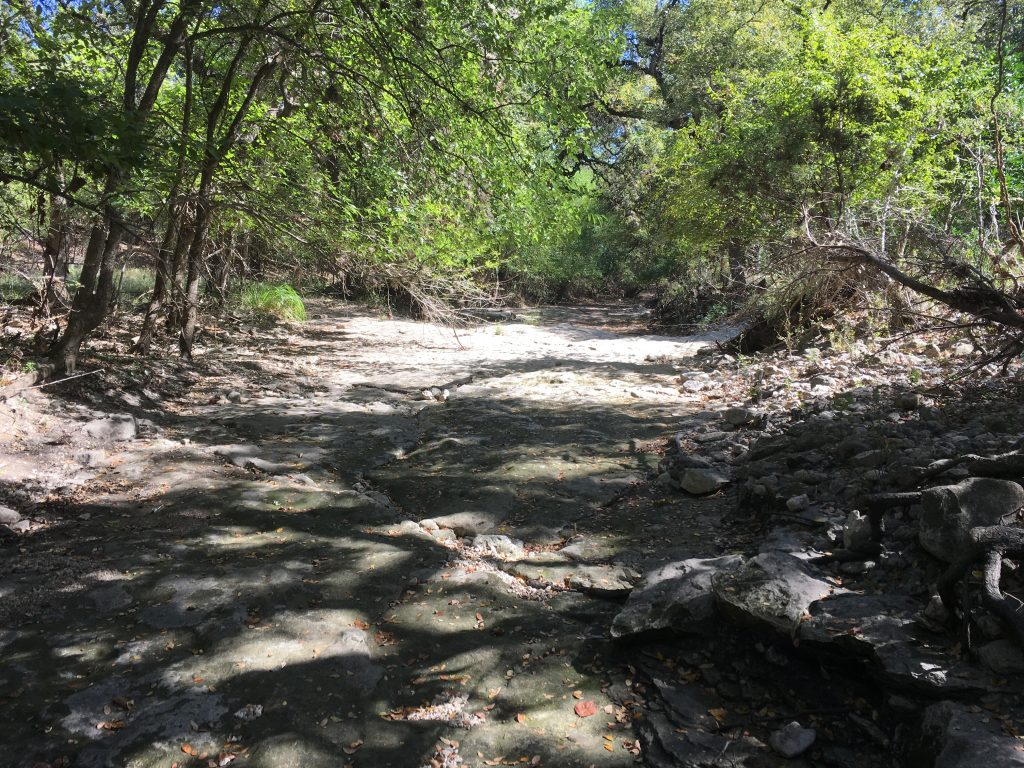 The rocky and more narrow side of Salado Creek.