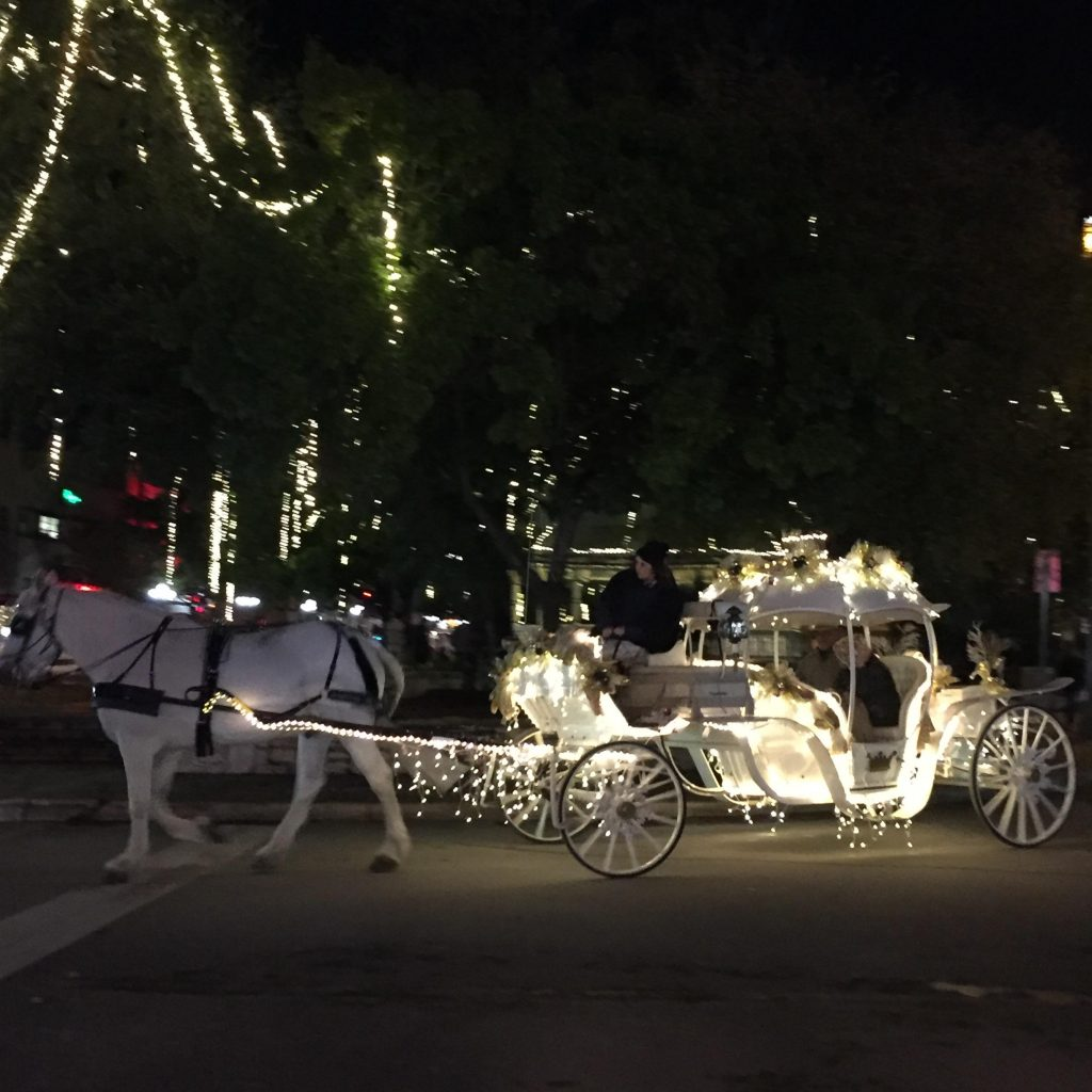 Even the horse and carriage contains Christmas lights in San Antonio.