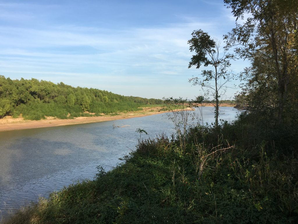 The Brazos River at Stephen F Austin State Park.