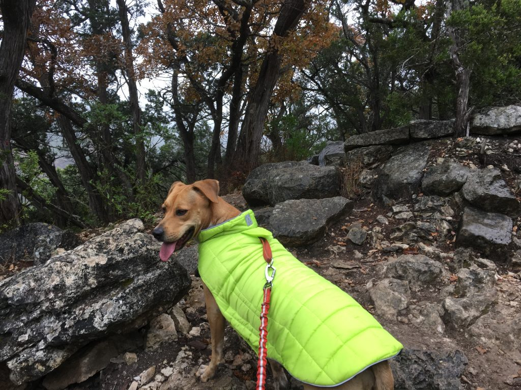 Abbey enjoys hiking at Lost Maples State Park.
