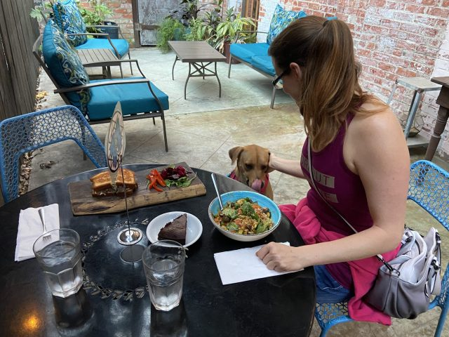Dog Friendly Restaurants in San Antonio