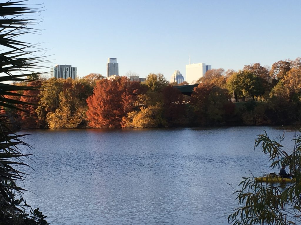 A view of downtown from Lady Bird Lake.