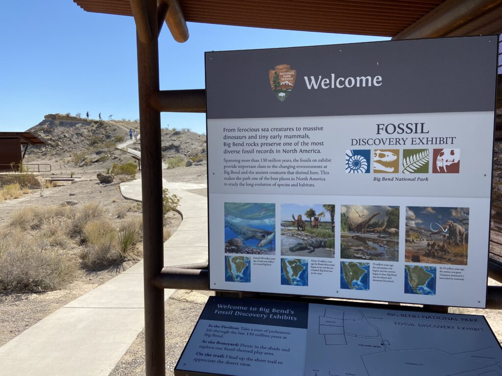 The walk to the Fossil Bone Exhibit at Big Bend National Park.
